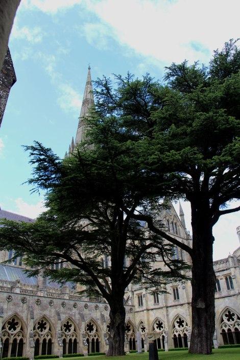 Cathédrale de Salisbury - Cloitre