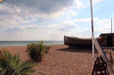 Brighton_5084